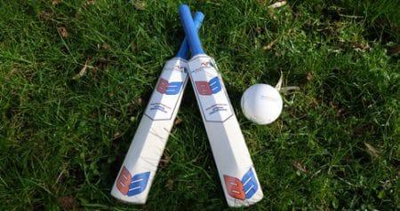 Cricket Bats and ball