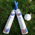 Cricket Bat large
